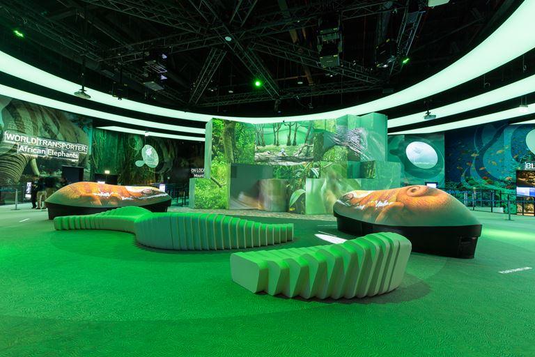 Куда пойти в Дубае с детьми: лучшие развлечения для семейного отдыха - Orbi