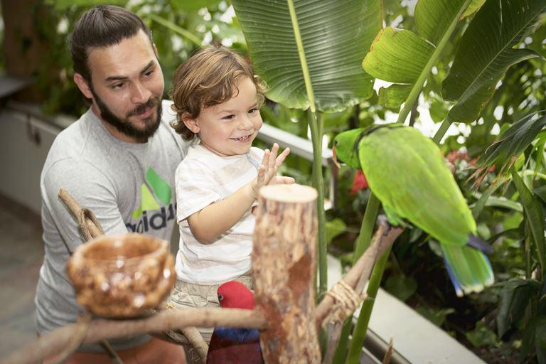 Куда пойти в Дубае с детьми: лучшие развлечения для семейного отдыха - Green Planet