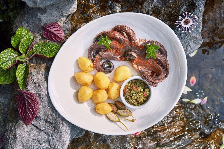 Печёный осьминог с молодым картофелем от ресторана ERWIN.РекаМореОкеан – рецепт