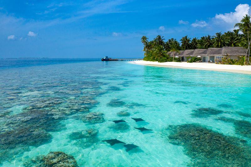 Baglioni Resort Maldives: частичка Италии в райских тропиках - фото 6