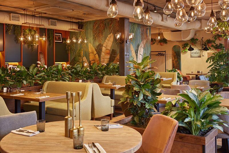 Новое место в Москве: ресторан абхазской кухни «Ача-Чача» на Войковской - фото 3